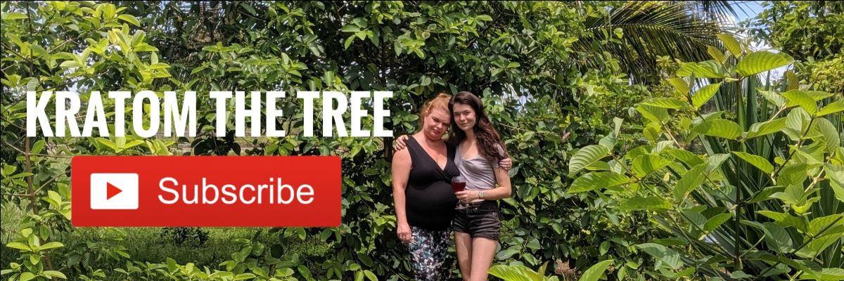 kratom the tree youtube