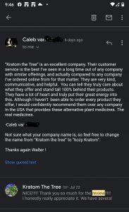 Kratom leaf review